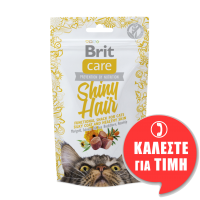 BRIT CARE FUNCTIONAL SHINY HAIR 50gr