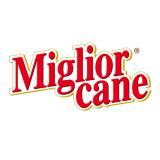 MIGLIOR CANE