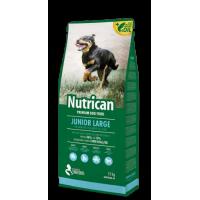 NUTRICAN ΣΚΥΛΟΥ JUNIOR LARGE 15kg