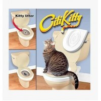 CITI KITTY