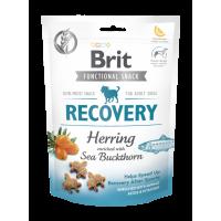 BRIT Functional Snack για Αποκατάσταση