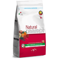 NATURAL TRAINER ADULT MEDIUM BEEF RICE GINSENG
