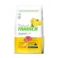NATURAL TRAINER ADULT MINI BEEF RICE GINSENG