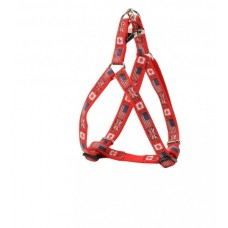CAMON RED FLAG HARNESS